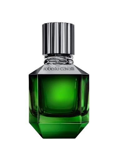 Roberto Cavalli Roberto Cavalli Paradise Found Men EDT 50 ml Erkek Parfümü Renkli